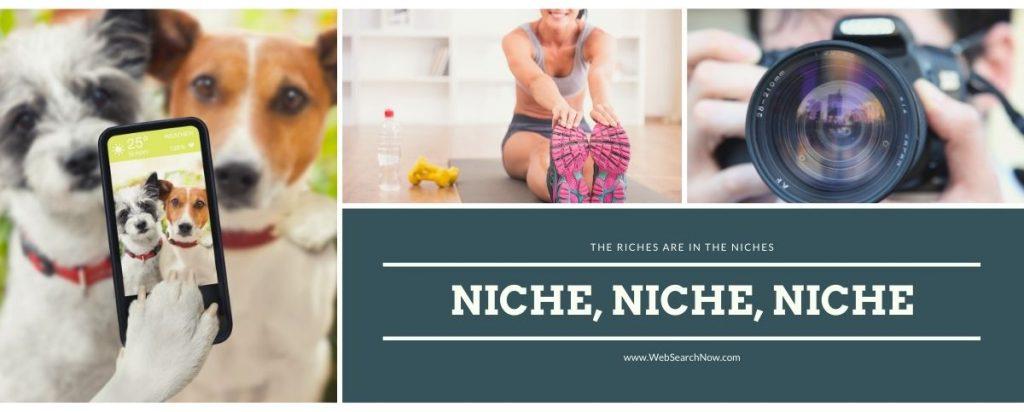 bloggi9ng niches