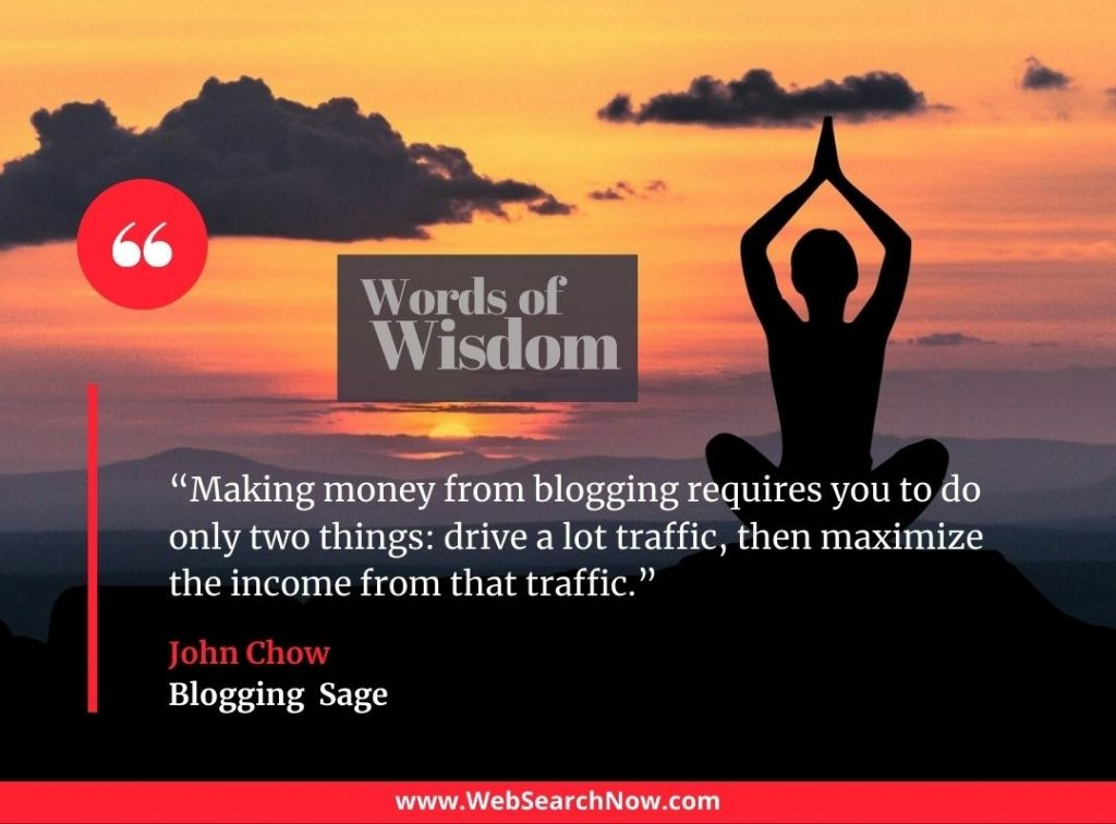 """""""Making money from blogging requires you to do only two things: drive a lot traffic, then maximize the income from that traffic."""" — John Chow"""